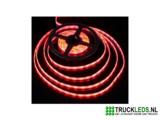 5 meter LEDstrip 24v waterproof rood._