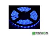 5 meter LEDstrip 24v waterproof Blauw._